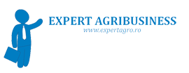 Expert-Agribusiness-logo.png